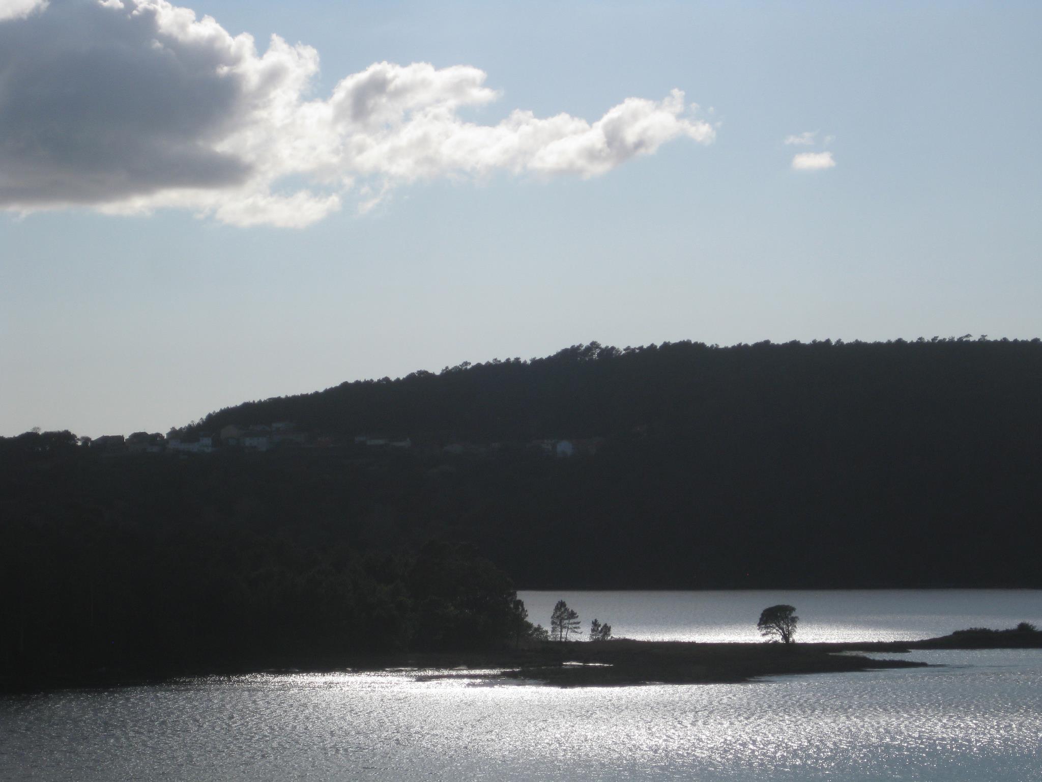 Galicia Alive Cover Image